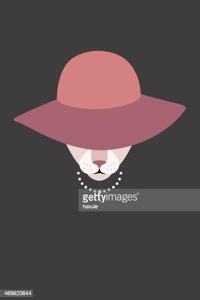 Fashion portrait of cat, Elegant cat like a girl