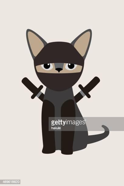 Fashion portrait of cat, ninja Cat