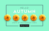Fashionable modern autumn background with bright autumn pumpkin for design of posters, flyers, banners.  Vector illustratio