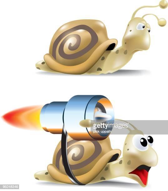 illustrations, cliparts, dessins animés et icônes de rapide et lente escargot - escargot