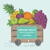Fast delivery of fresh fruits. The box on wheels with fruits. Delivery of organic food. Conceptual image, drawn in ink.