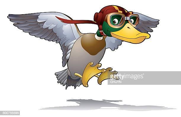 fast mallard duck - flying goggles stock illustrations
