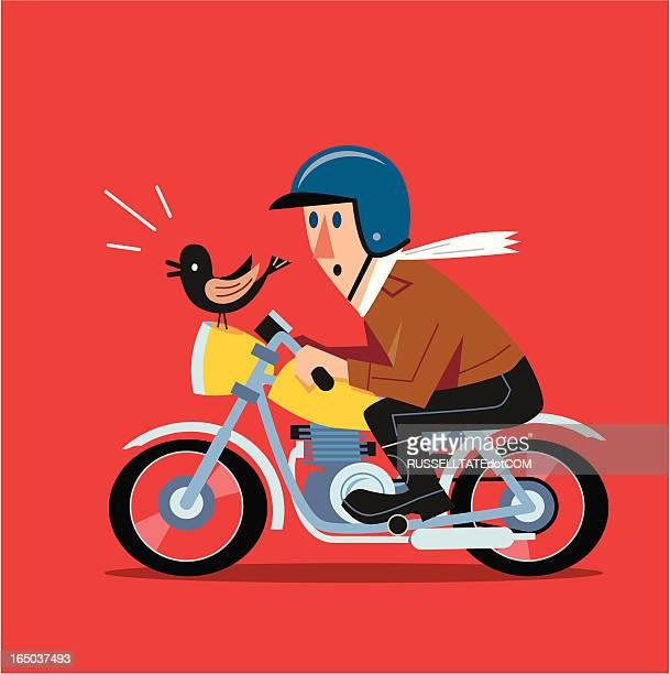 fast motorbike - motorcycle helmet stock illustrations, clip art, cartoons, & icons