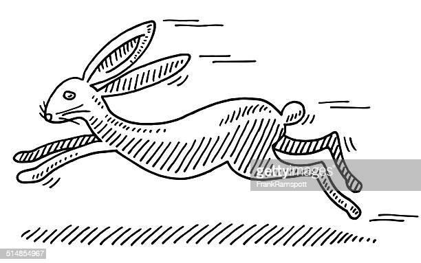 illustrazioni stock, clip art, cartoni animati e icone di tendenza di coniglio disegno veloci - animali pasquali