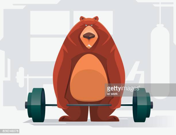 fat bear lifting barbell - weight training stock illustrations