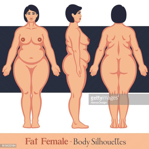 ilustraciones, imágenes clip art, dibujos animados e iconos de stock de cuerpo de la mujer gorda - modelos del cuerpo humano