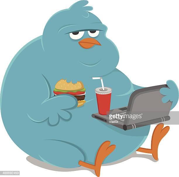 Fat overweight bluebird