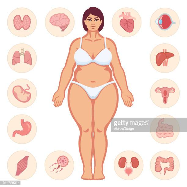 fat woman body - body conscious stock illustrations, clip art, cartoons, & icons