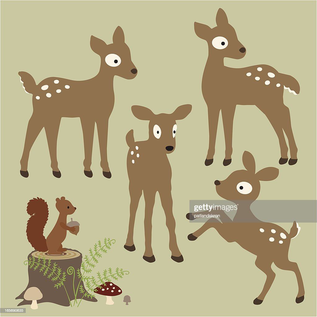 Fawns In the Ferny Forest