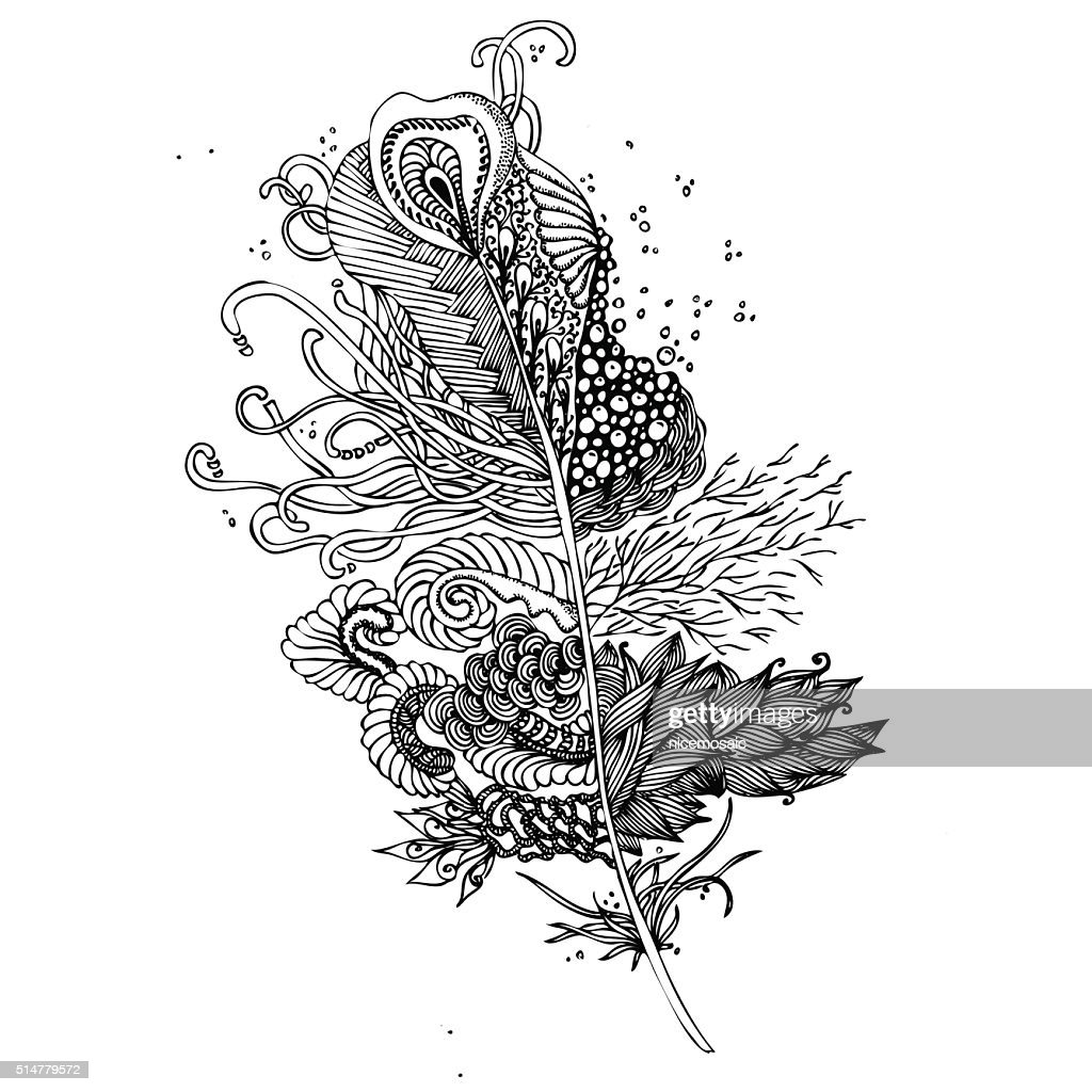 Feather on a white background. Vintage Artistically hand drawn