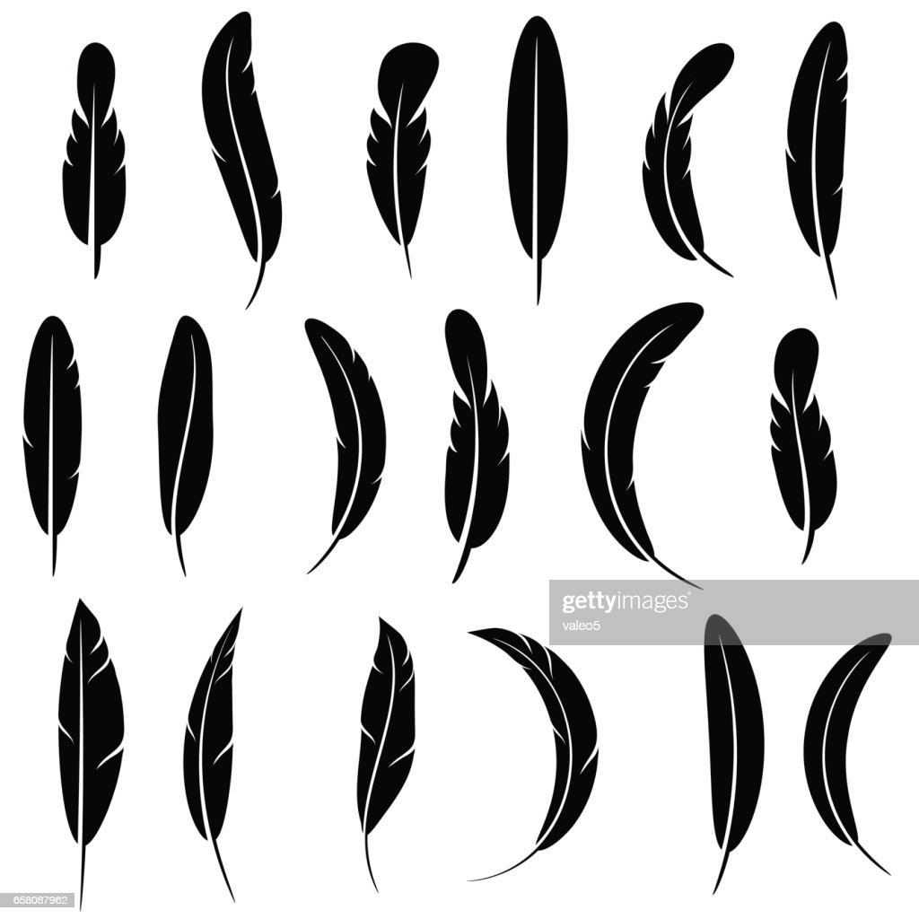 Feather Silhouette Collection Isolated