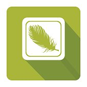 Feather. Vector icon.
