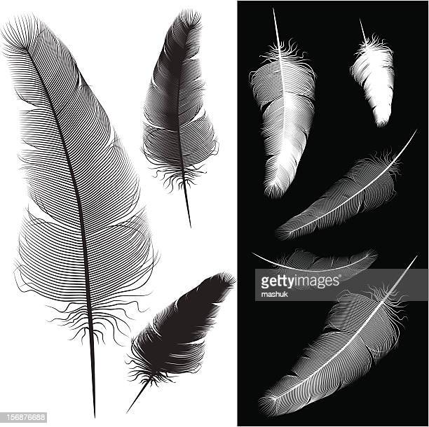 ilustraciones, imágenes clip art, dibujos animados e iconos de stock de almohadas de pluma - plumadeescribir