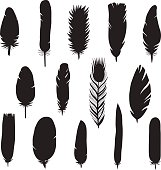 Feathers black silhouettes icons vector set. Modern design.