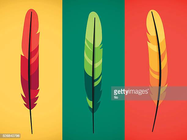 feathers - quill pen stock illustrations