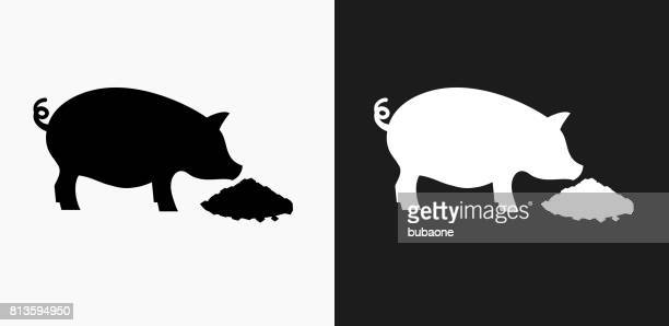 Feeding Pig Icon on Black and White Vector Backgrounds