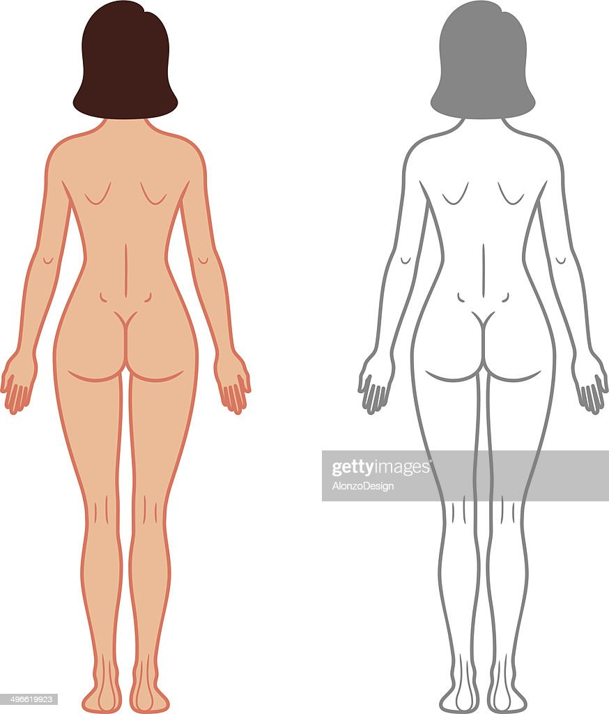 Vista Posterior De Cuerpo Hembra Arte vectorial | Getty Images