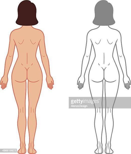 Female Body Back View