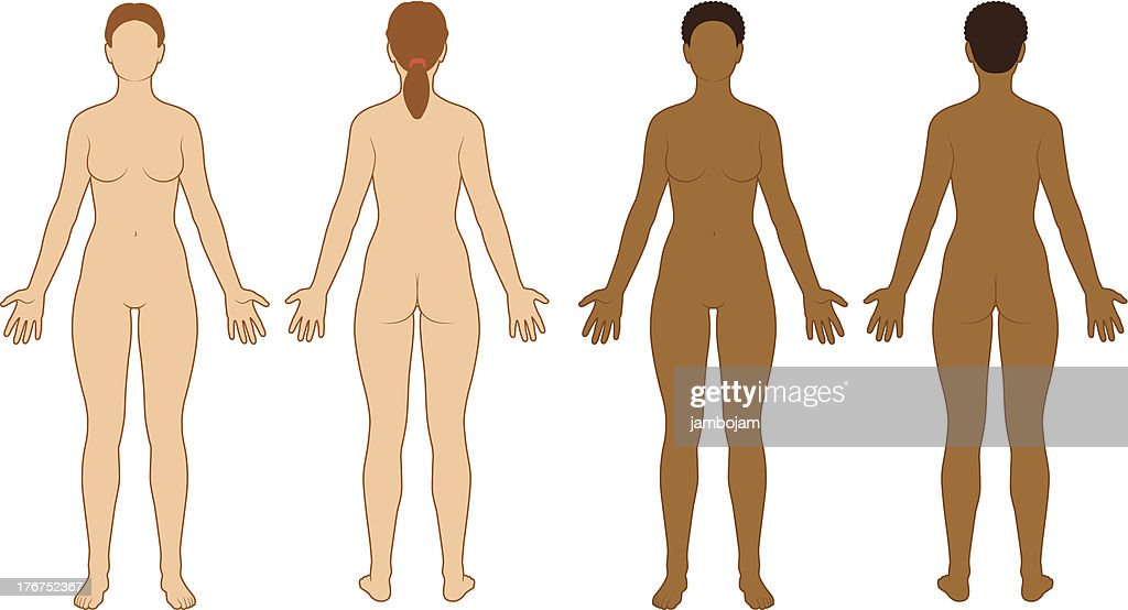Female Body Outline Vector Art Getty Images