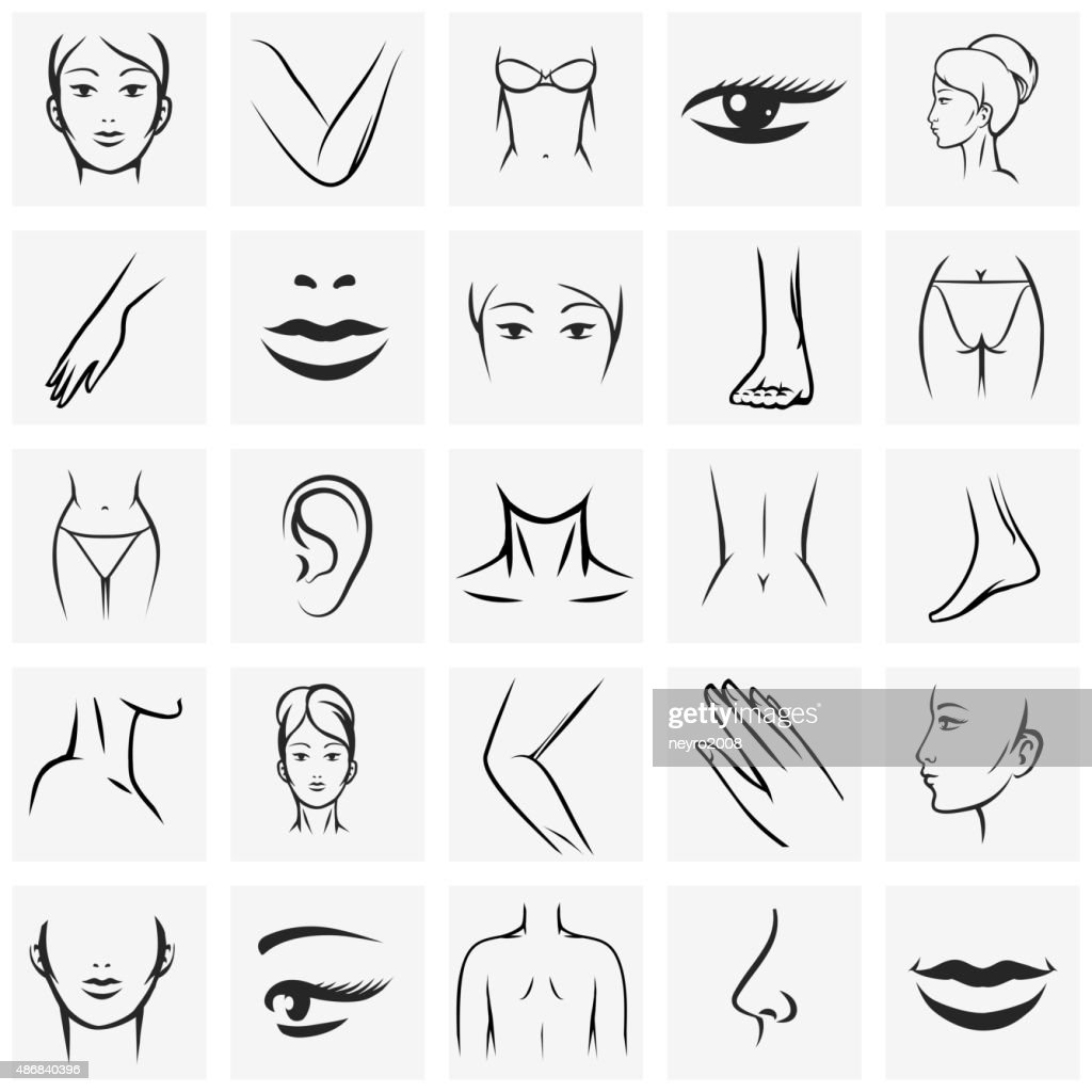 Female body parts icons