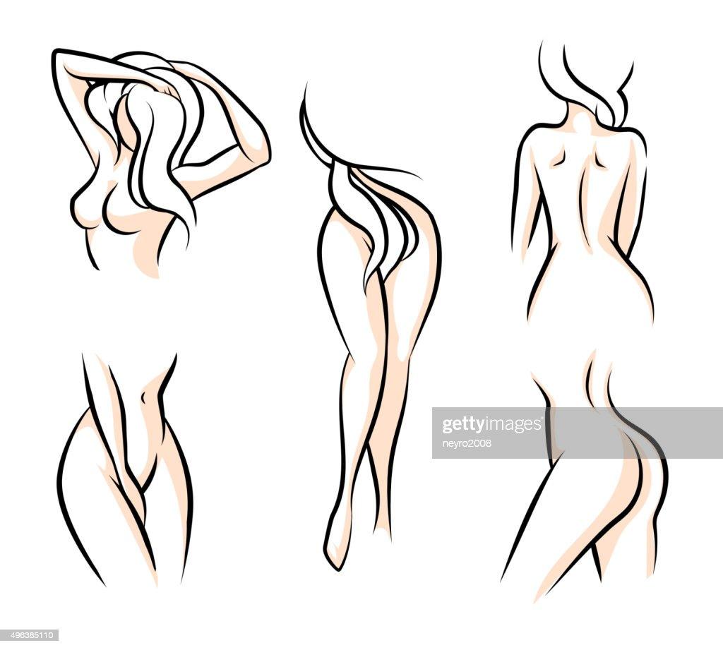 Female body parts