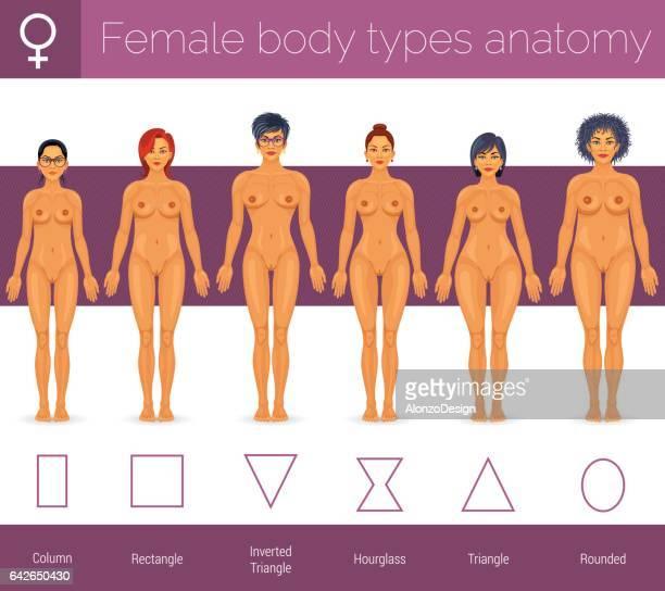 Vrouwelijke lichaamstypes