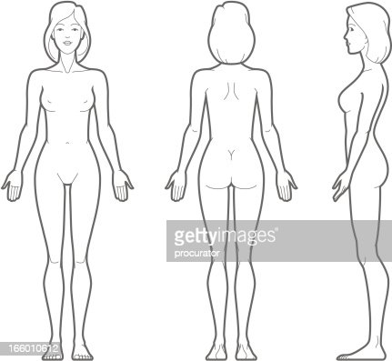 Woman Body Vector Art Getty Images