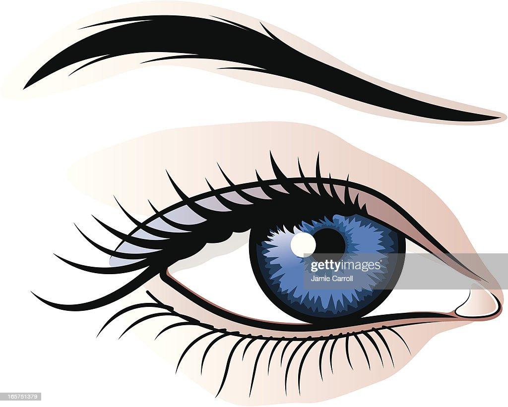 Female eye illustration : Illustrationer