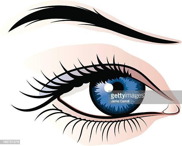 illustrazioni stock, clip art, cartoni animati e icone di tendenza di illustrazione di occhio femmina - occhi azzurri