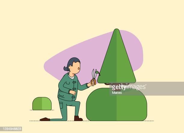 女性の造園家は木を剪定し、切断します。 - 造園師点のイラスト素材/クリップアート素材/マンガ素材/アイコン素材