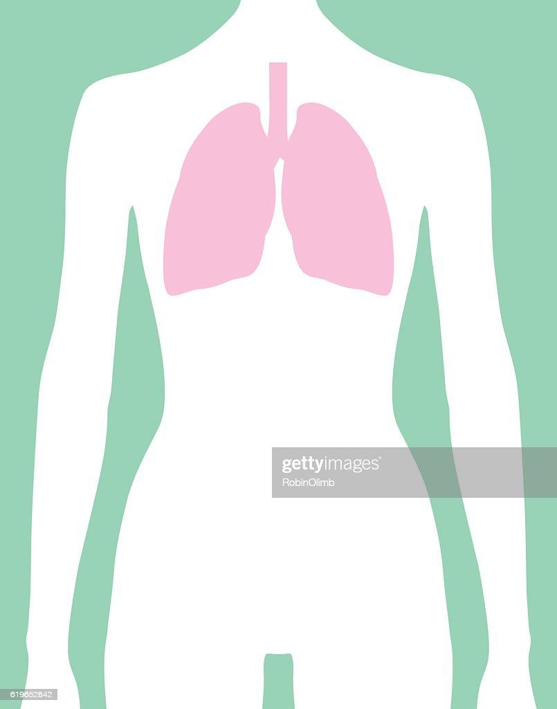 Female Lungs Body Icon : Stock Illustration