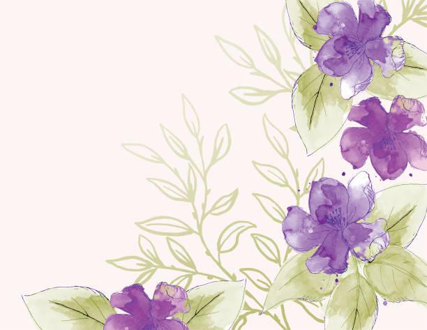 feminine watercolor flowers background - femininity stock illustrations