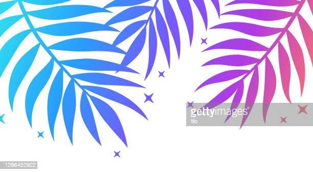 fern leaf gradient border design element - hawaiian shirt stock illustrations