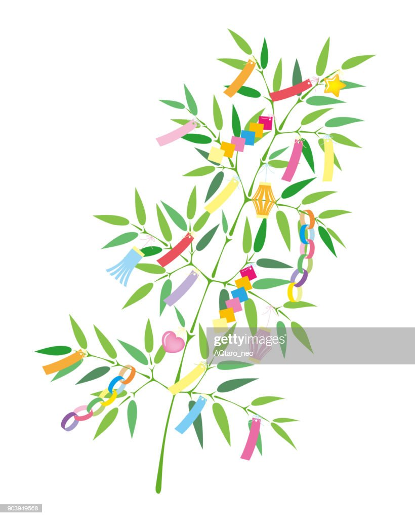 TANABATA Festival bamboo grass decoration, isolated on white background.