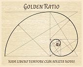 Fibonacci section spiral, vintage concept