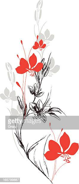 ilustraciones, imágenes clip art, dibujos animados e iconos de stock de campo de flores - cultura coreana