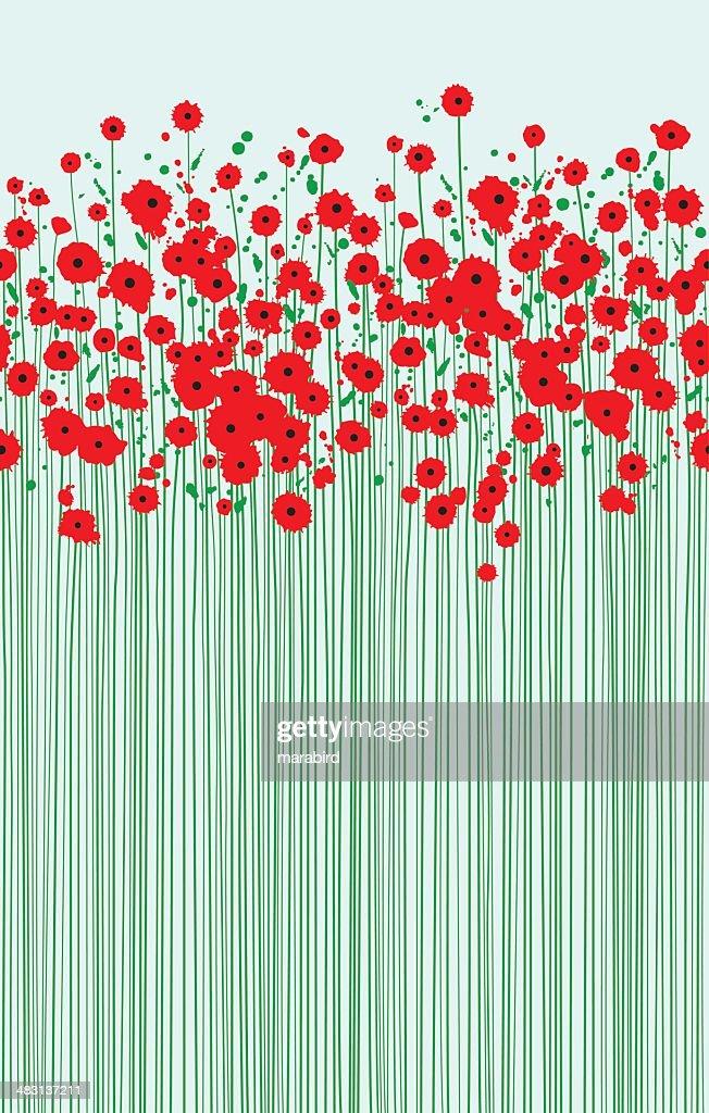 field of fragile scarlet poppies clear blue sky