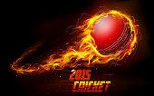 Fiery cricket ball