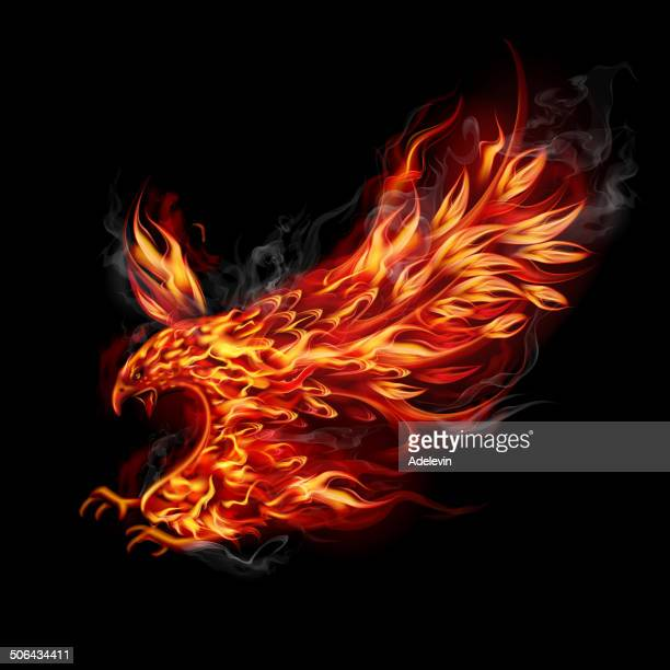 fiery flying eagle - fire natural phenomenon stock illustrations, clip art, cartoons, & icons
