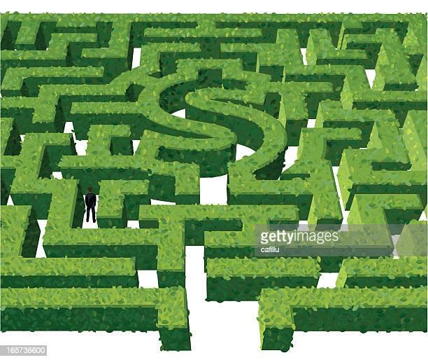 "finanzielle maze "",financial maze"" - hecke stock-grafiken, -clipart, -cartoons und -symbole"
