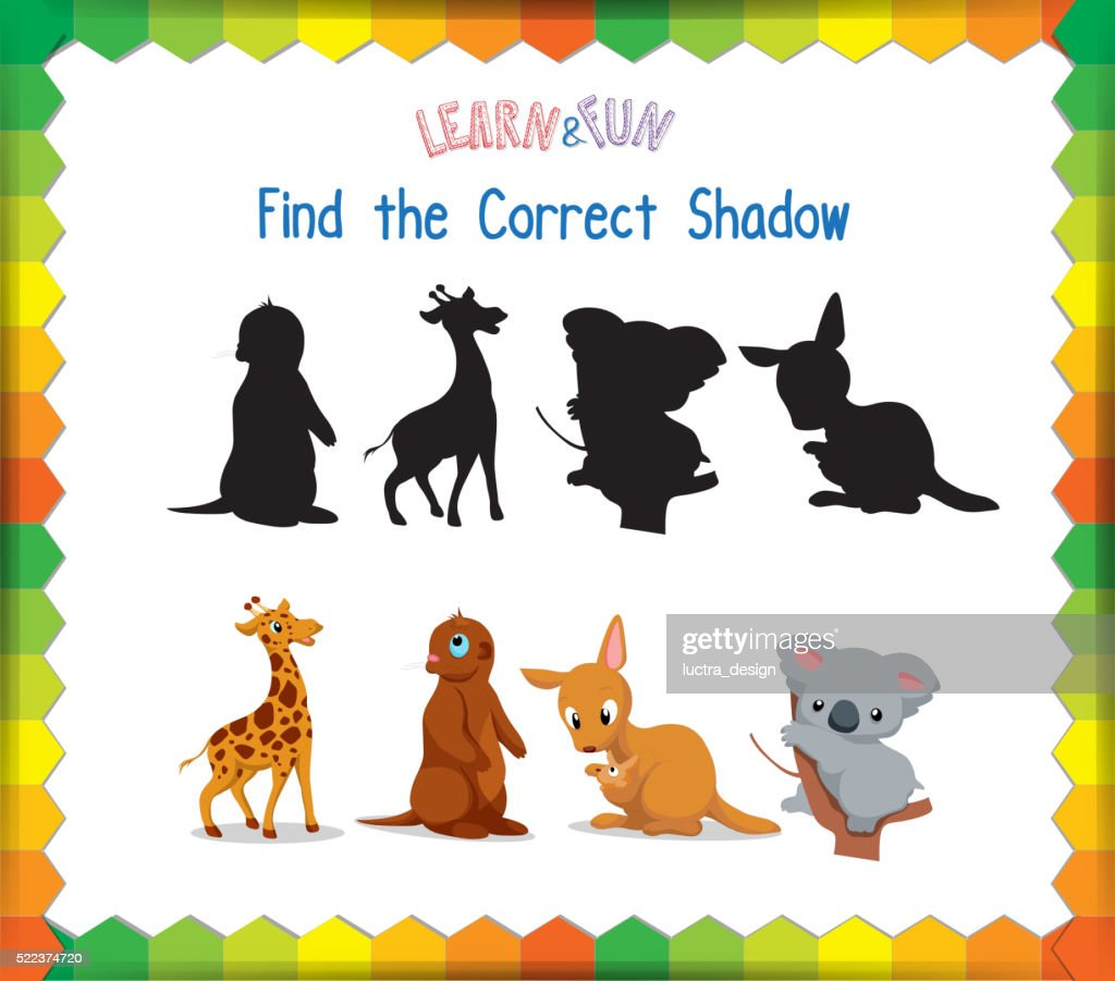 Find the correct Animals shadow