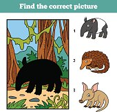 Find the correct picture. Malayan tapir and background