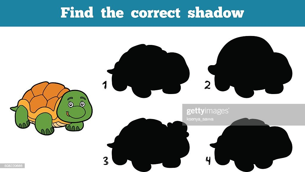 Find the correct shadow (turtle)