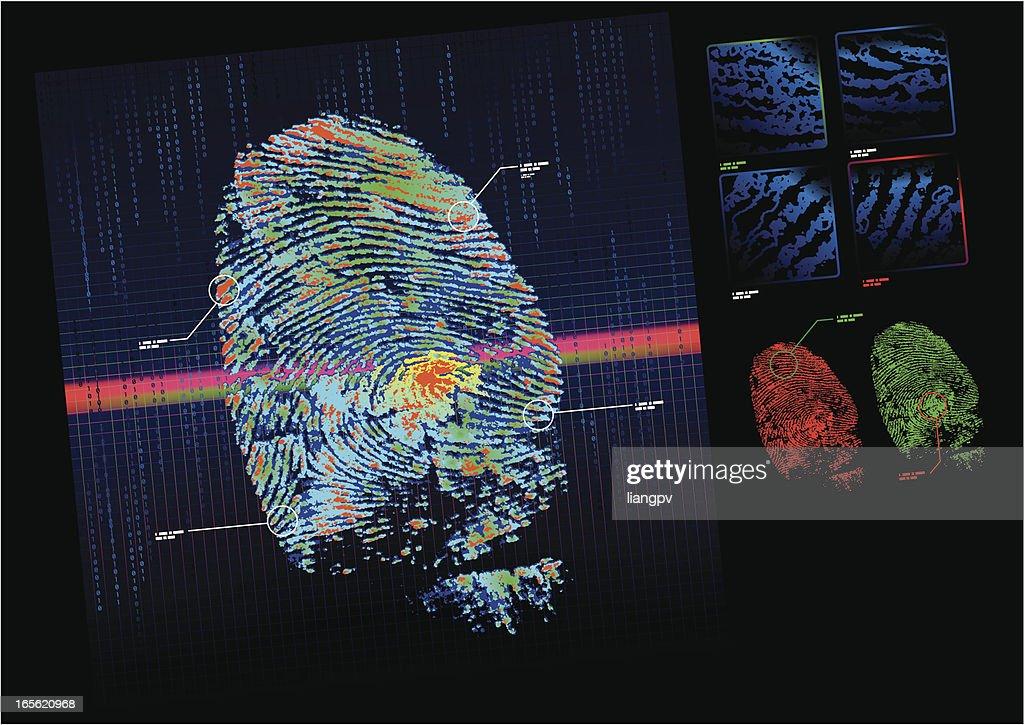 A fingerprint scanner checking a print against a database
