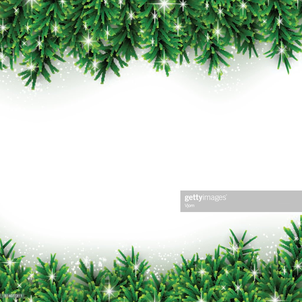 Fir christmas background.