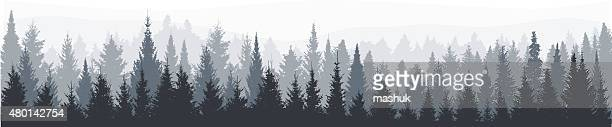 fir tree forest panorama - coniferous tree stock illustrations, clip art, cartoons, & icons