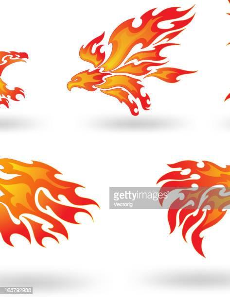 fire eagle - hawk bird stock illustrations, clip art, cartoons, & icons