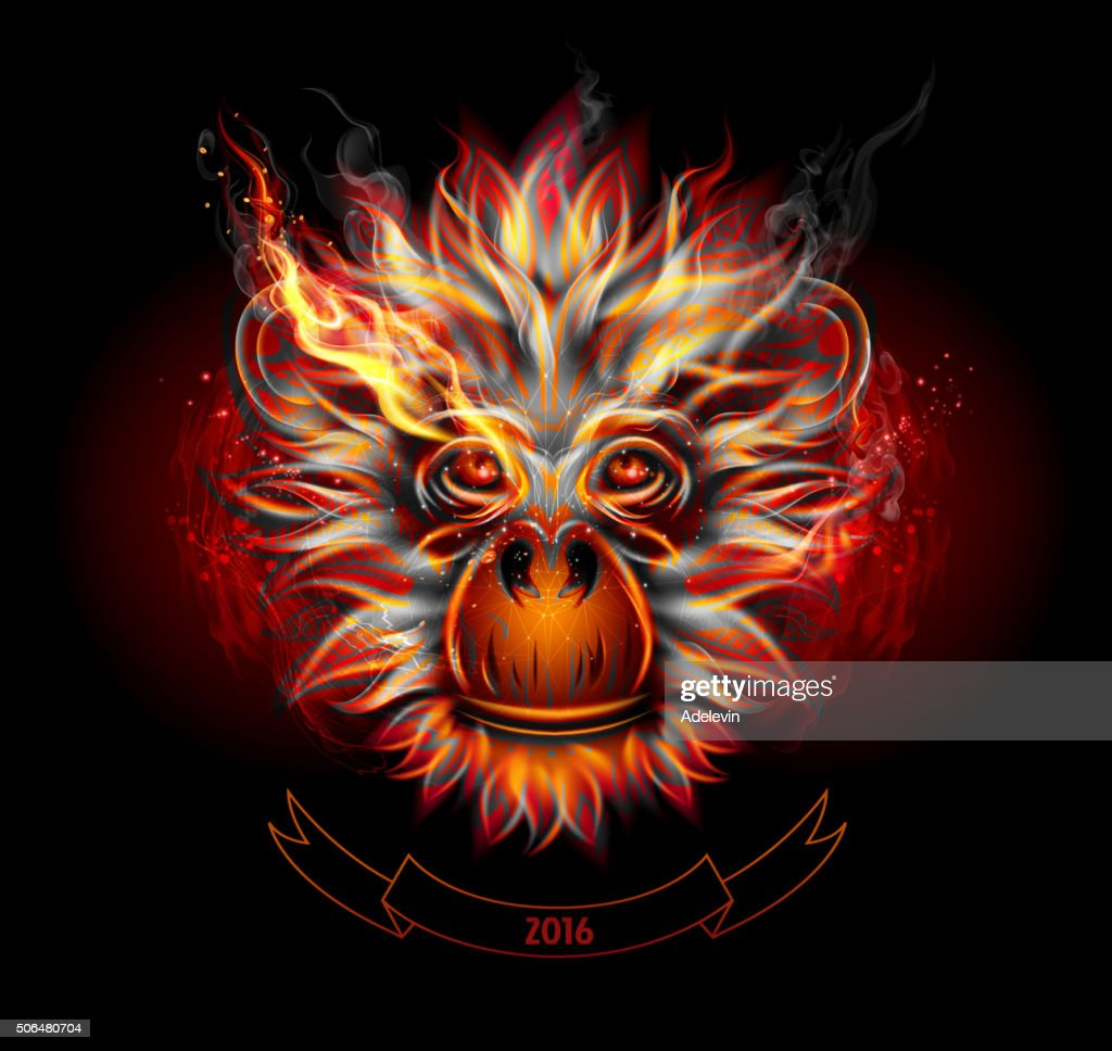 Fire Monkey's Head : stock illustration