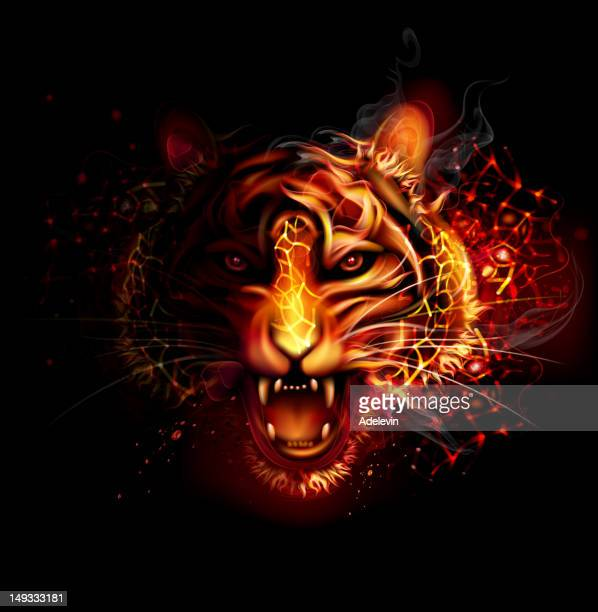 fire tiger - natural phenomenon stock illustrations, clip art, cartoons, & icons