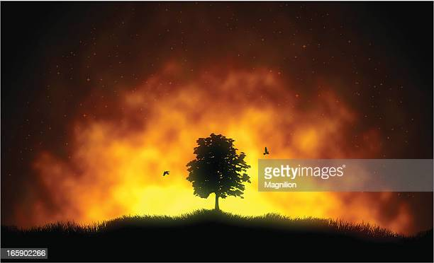fire - fire natural phenomenon stock illustrations, clip art, cartoons, & icons